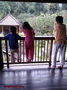 morning view. Sepanjang malam hujan, dan pagi itu juga masih hujan, loh!